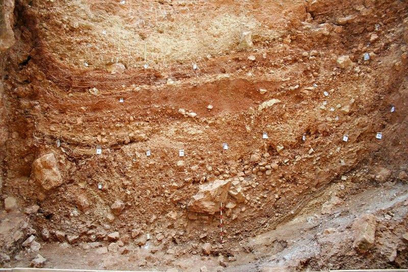 15 de las muestras analizadas proceden de los yacimientos burgaleses de Atapuerca. En la imagen, un detalle de la sección este del yacimiento de la Sima del Elefante en Aatapuerca, correspondiente a la campaña de excavaciones del año 2006. (Public Domain)