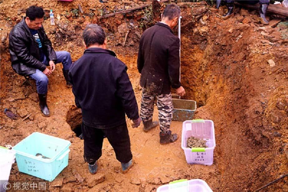 Labores de excavación de las monedas. (jxnews.com.cn)