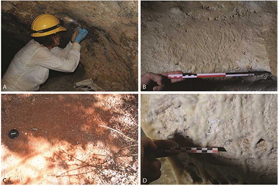 """Toma de muestras: A) carbonilla de las pinturas rupestres; B) muestras de pinturas indígenas (obsérvense las marcas de dedos en esta """"paleta"""" de pinturas, muestra 130); C) sedimentos superficiales, ocre rojo de la Vereda del Centro, localización de muestras 998; D) acumulaciones de calcita sobre arte rupestre. (Journal of Archaeological Science CC BY 4.0)"""