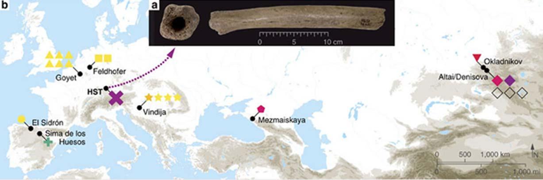 (a) Fotografías del fémur de Hohlenstein-Stadel, (b) mapa de los yacimientos arqueológicos en los que se ha podido reconstruir por completo ADN mitocondrial perteneciente a humanos arcaicos (Cosimo Posth et al CC BY 4.0)