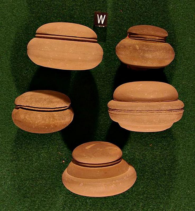 """Diversos ejemplos de las típicas concreciones denominadas """"Button Rock"""" y descubiertas en el Condado de Schoharie, Nueva York. La escala que aparece bajo la """"W"""" indica 1 centímetro. (Paul Heinrich/CC BY-SA 3.0)"""