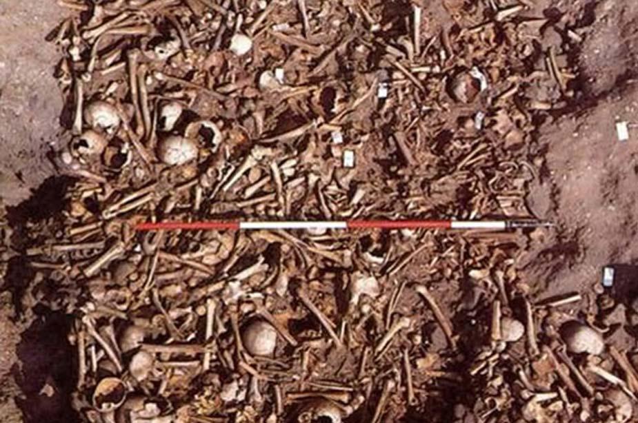 Los cuerpos machacados y destrozados de guerreros vikingos desenterrados en Derbyshire, Inglaterra, ahora identificados como soldados del Gran Ejército Vikingo. (Martin Biddle / Universidad de Bristol)