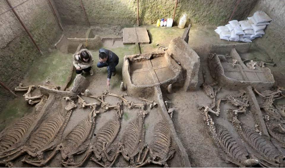 Cámara funeraria hallada la semana pasada en la que se encontraron 13 esqueletos completos de caballos. Fotografía: People's Daily