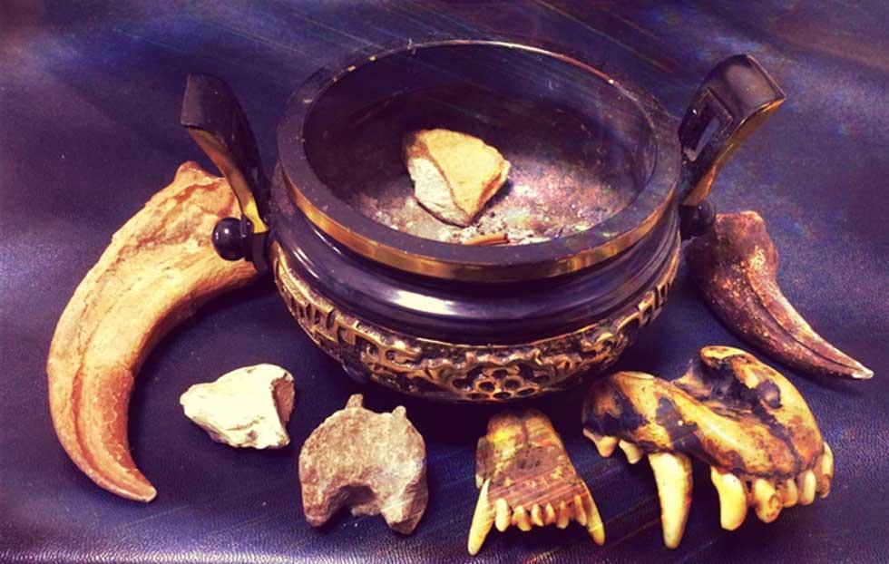 Medicina china tradicional (Legendz Collective)