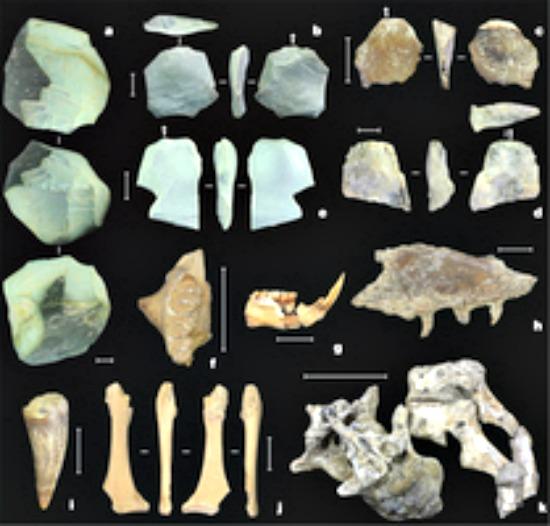 Algunos de los fósiles y utensilios de piedra recientemente descubiertos en el yacimiento indonesio de Mata Menge. (Fotografía: Nature)