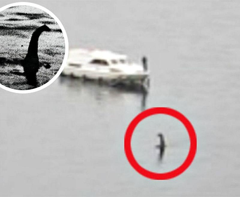 Imagen de otra supuesta aparición de Nessie, emergiendo del lago Ness. (Fotografías: La Gran Época)