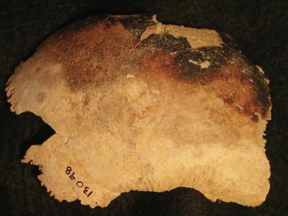 Este fragmento de cráneo, que fue destrozado y quemado, fue recuperado en las excavaciones realizadas en la aldea abandonada de Wharram Percy, condado de Yorkshire, Inglaterra. (Historic England/PA Wire)