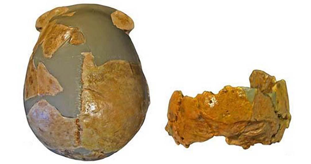 Fragmentos de cráneos descubiertos en China central. Fotografía: Wu Xiujie