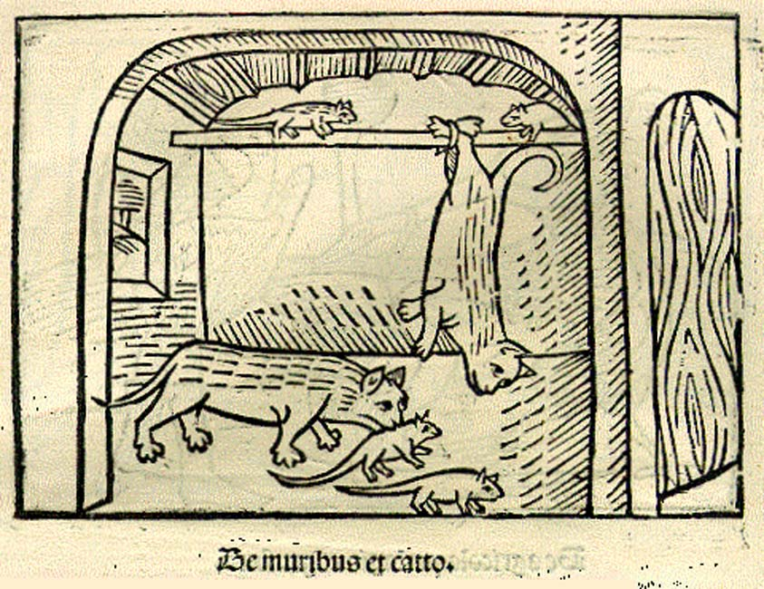 """Ilustración de """"El gato y los ratones"""", edición alemana de las fábulas de Esopo publicada en 1501. (Public Domain)"""