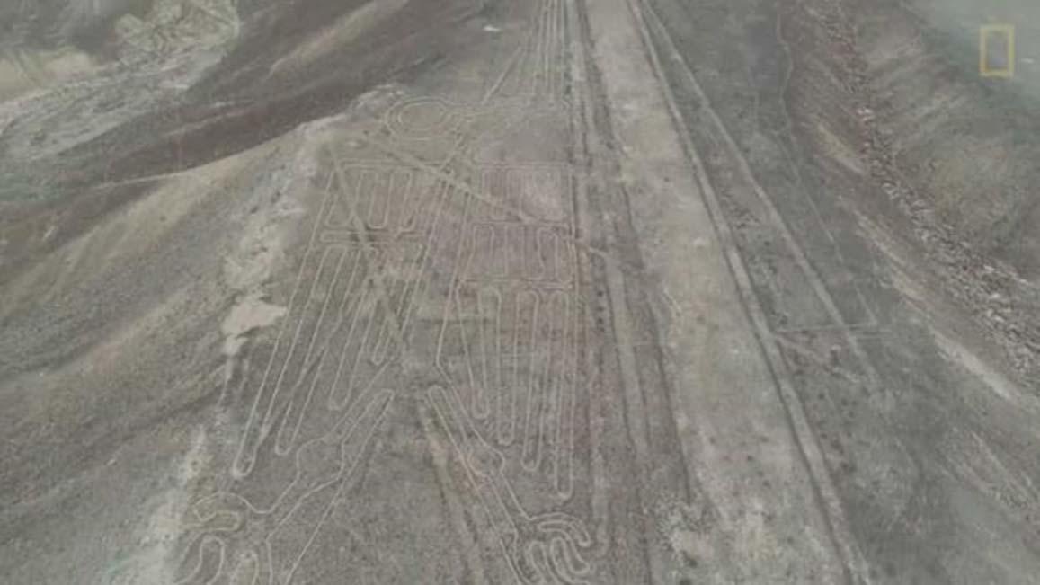 El geoglifo del pelícano. (National Geographic)