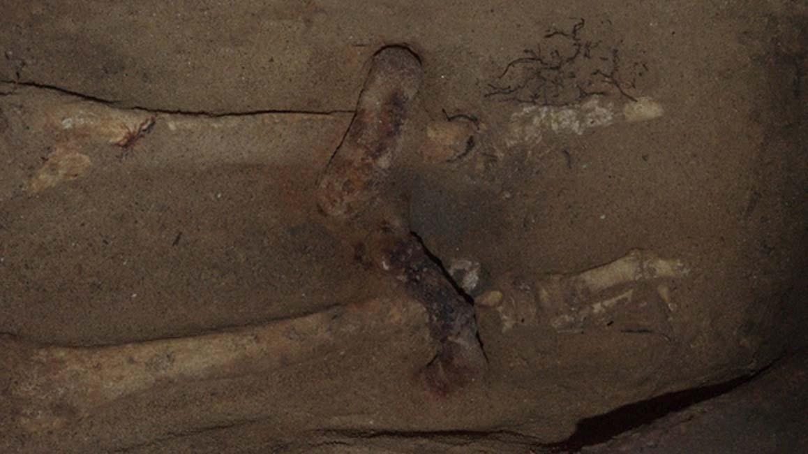 Los grilletes en torno a los tobillos del esqueleto. (Giorgio Baratti)