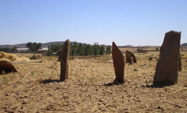 Gudit-Stelae-Field.jpg