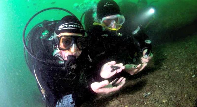 Arqueólogos Subacuáticos muestran restos sumergidos de una misteriosa civilización que prosperó en lo que hoy es Inglaterra hace más de 8.000 años. (Fotografía: La Gran Época/Universidad de Warwick)