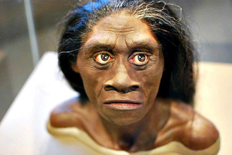 Reconstrucción del posible aspecto de una hembra de Homo floresiensis (Flickr/CC BY 2.0)