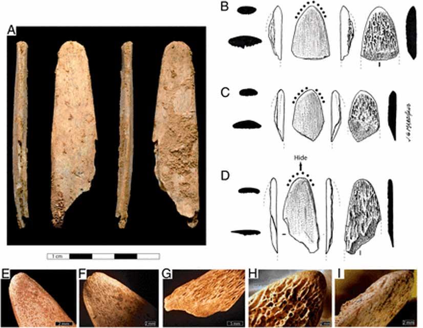 Fotografías y dibujos de herramientas de hueso procedentes de los yacimientos franceses de Abri Peyrony (AP) y Pech-de-l'Azé I (PA I). (Soressi, M. et al)