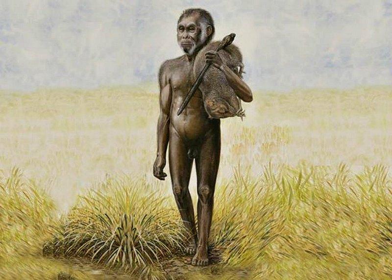 Recreación artística de un Homo floresiensis. (Fotografía: El Mundo/Nature)