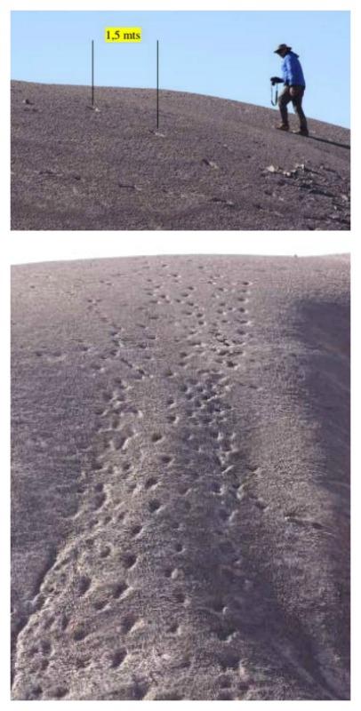 El fotógrafo e investigador chileno ha obtenido imágenes en las que se evidencian huellas cada 1,5 metros. Huellas de pies gigantes de al menos 60 cm de largo. (Fotografías: A. Nadgar Rojas)