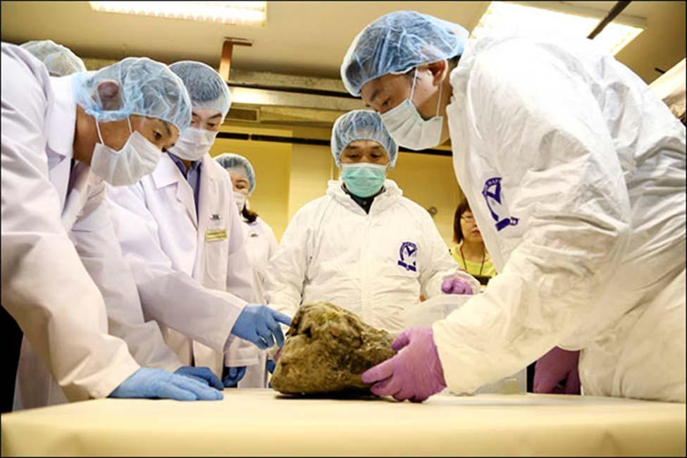 El gurú de la clonación surcoreano Hwang Woo-suk tomó muestras de uno de los cachorros. Fotografías: Galina Mozolevskaya/YSIA