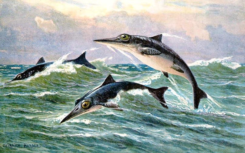 Ilustración de ictiosaurios de un género indeterminado (1916). (Public Domain)