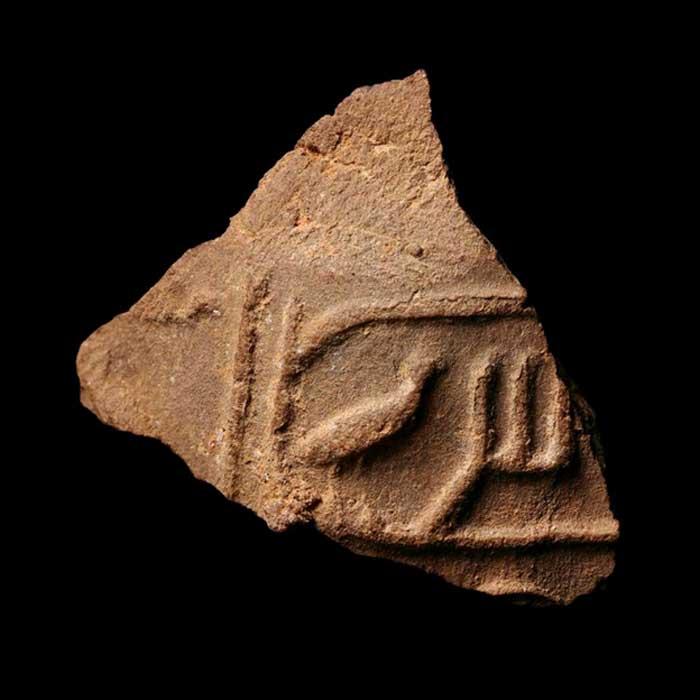 Impresión de techo del rey Sahure. Crédito: Ministerio de Antigüedades de Egipto