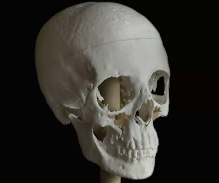Este modelo tridimensional del cráneo de Meritamón tardó en imprimirse 140 horas. (Fotografía: Paul Burston)