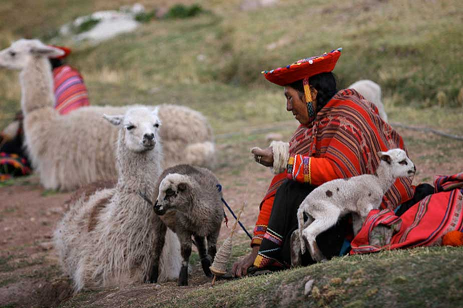 Habitante indígena de los Andes con llamas y corderos (CC BY-NC-SA 2.0)