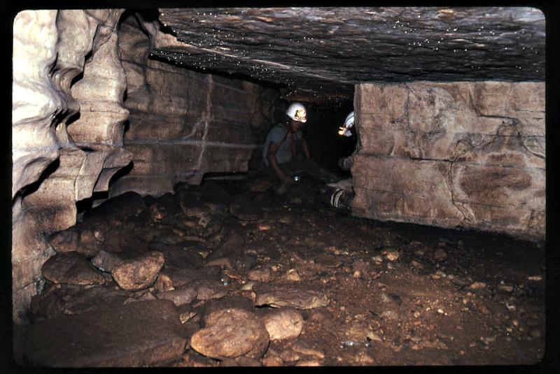 Interior de la Cueva de los Tayos (Fotografía: Historia Enigmática)