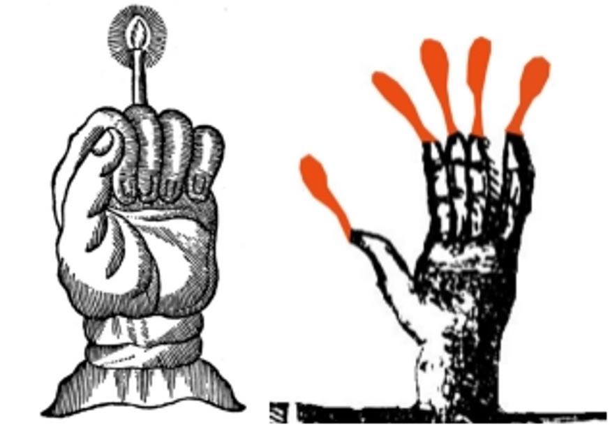 Dos formas posibles de utilizar la Mano de Gloria. (Museo de Whitby)