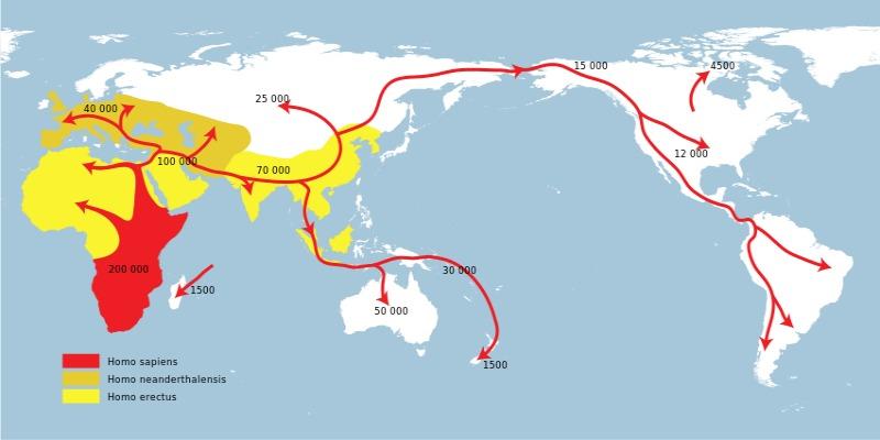 """Mapa de las primeras migraciones humanas, tal y como se habían interpretado hasta ahora según la teoría """"fuera de África"""". (Public Domain)"""