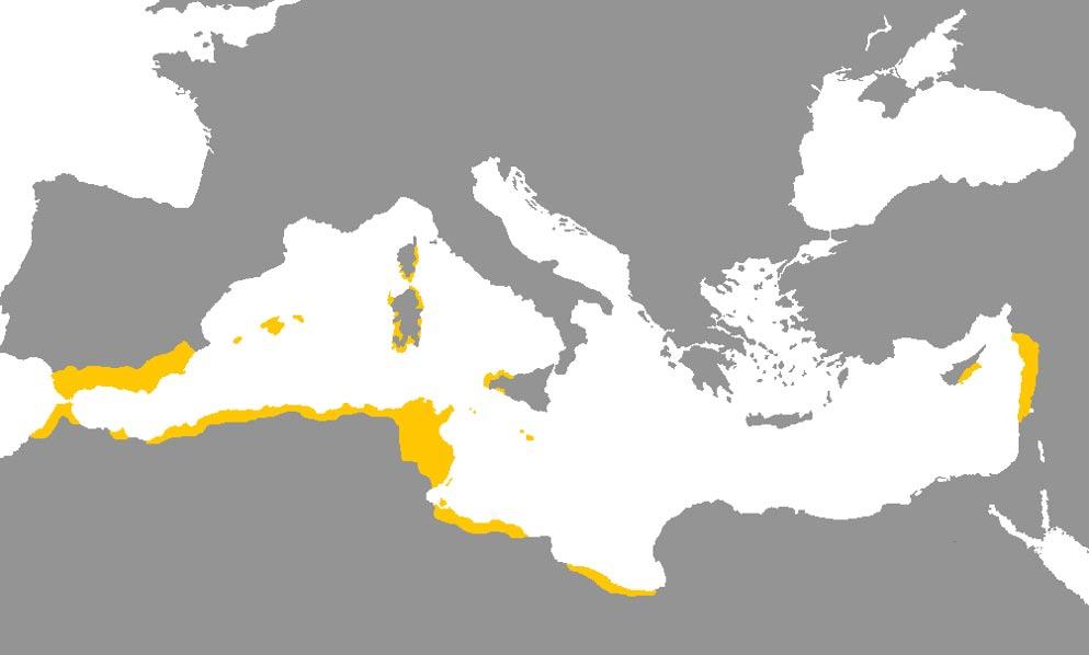 Distribución del lenguaje fenicio, en amarillo; los expertos creen que el alfabeto proto-fenicio fue la base del alfabeto latino utilizado actualmente por la mayor parte de lenguas europeas. (Imagen: Fobos92/Wikimedia Commons)