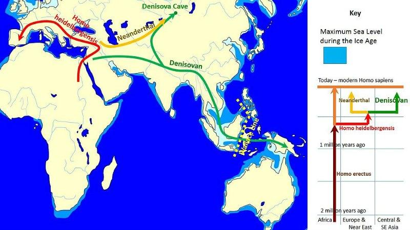 Mapa comparativo en el que pueden observarse la evolución geográfica y migraciones de denisovanos, neandertales y heidelbergensis. (Public Domain)