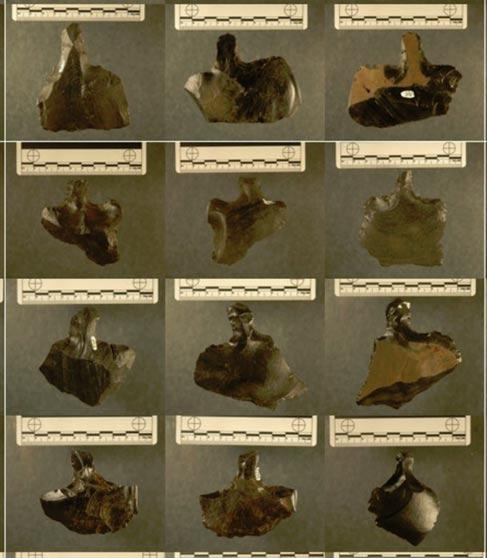 Imágenes de diversos mata'a. Fotografías: Carl Lipo, Universidad de Binghamton