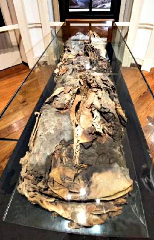 El sudario que envuelve a la momia está confeccionado con 4 capas de pieles de distintos animales, lo que parece indicar que este personaje formaba parte de la élite social grancanaria de hace 15 siglos. (Fotografía: EFE/Ángel Medina G.)