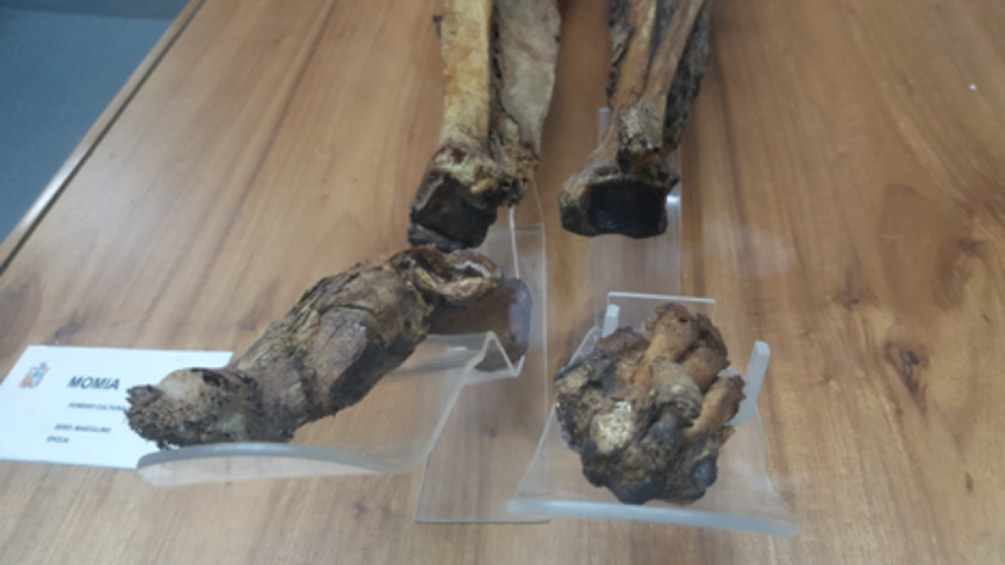 Momia de Guano. Fotografías cortesía de Chris Aguilar