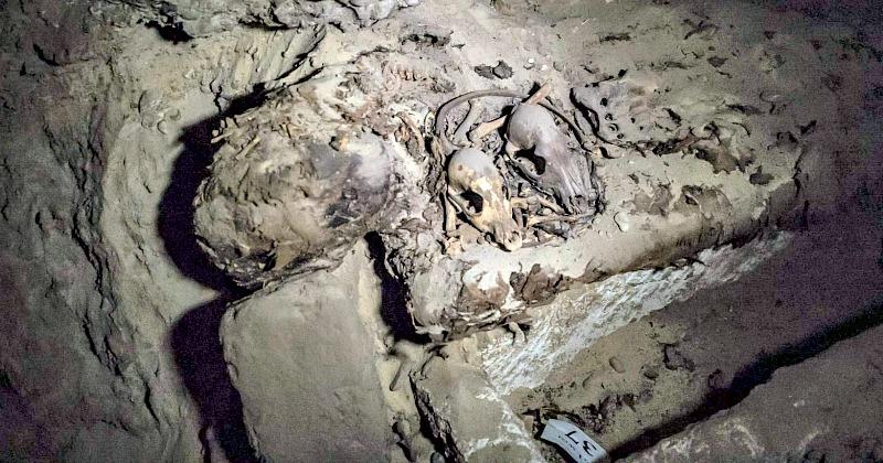 Además de las momias se han descubierto restos de animales y dos papiros escritos en demótico. (Fotografía: El País/Khaled Desouki /AFP).