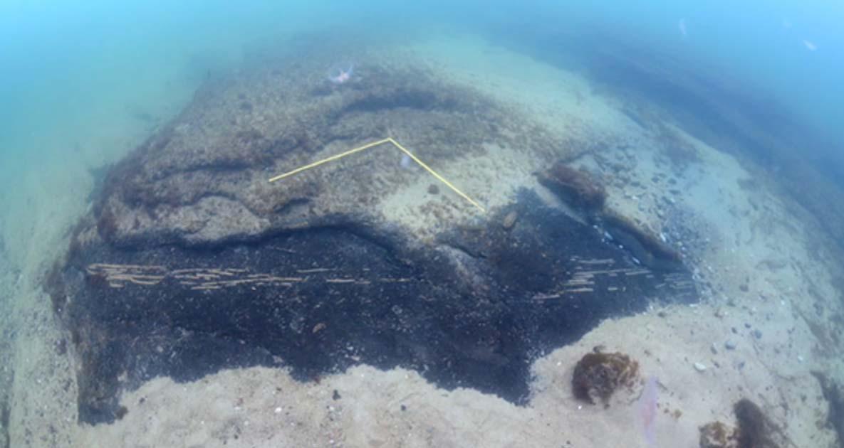Antiguas nasas para pescar de la Edad de Piedra. (Fotograma vídeo: Universidad de Lund)