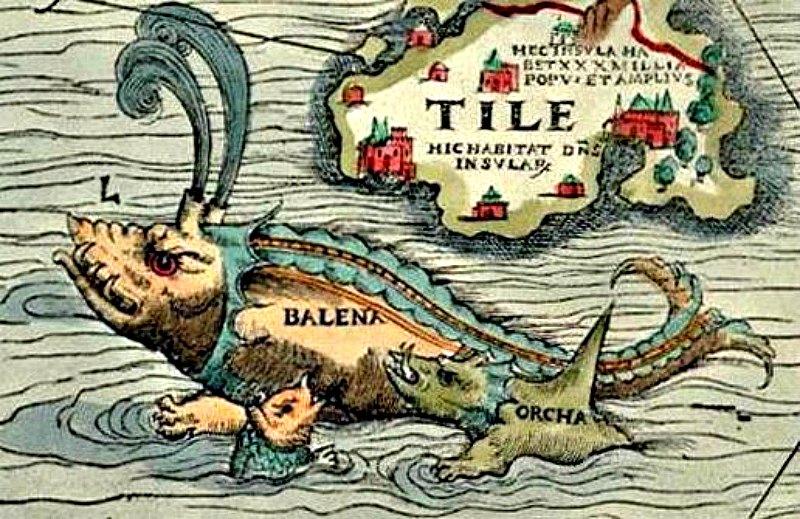 Orcas atacando a una ballena. Detalle de un mapa oceánico de 1539 dibujado por Olaus Magnus (1490-1557). (Public Domain)