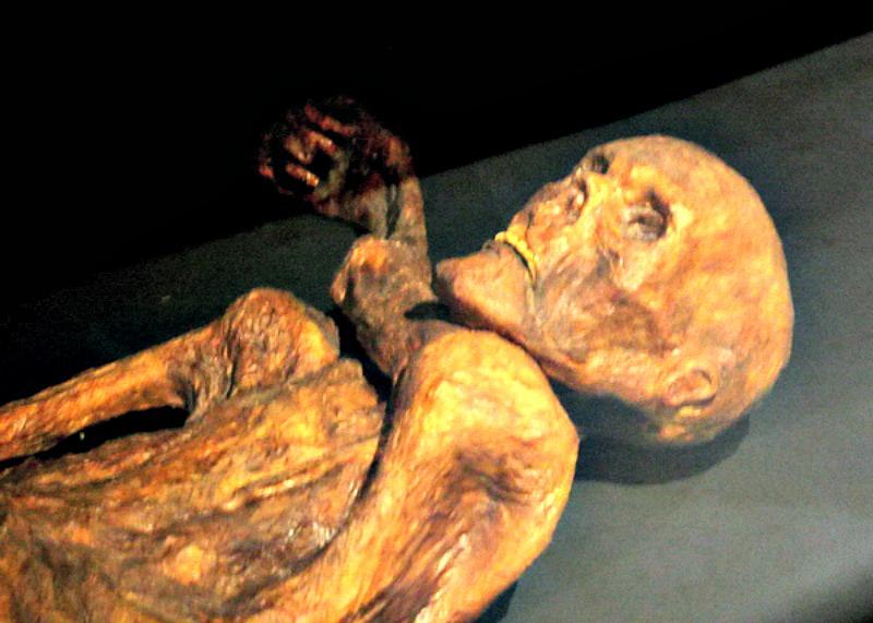 Reconstrucción de la momia de Ötzi expuesta en el Museo de Prehistoria de Quinson, Francia. (120 – CC BY-SA 3.0)