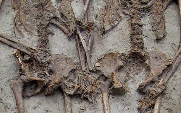 Restos óseos de una pareja cogida de la mano hallados en Módena, Italia. (Credit: Rex Features)