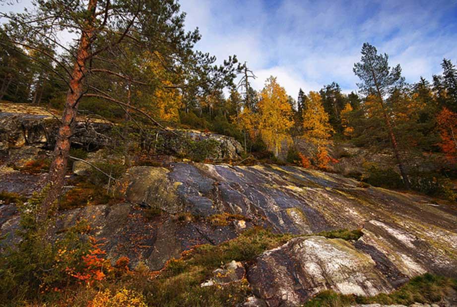 Paisaje de otoño en el Parque Nacional de Koli. Región de Carelia del Norte, Finlandia. (Miguel Virkkunen Carvalho/CC BY 2.0)