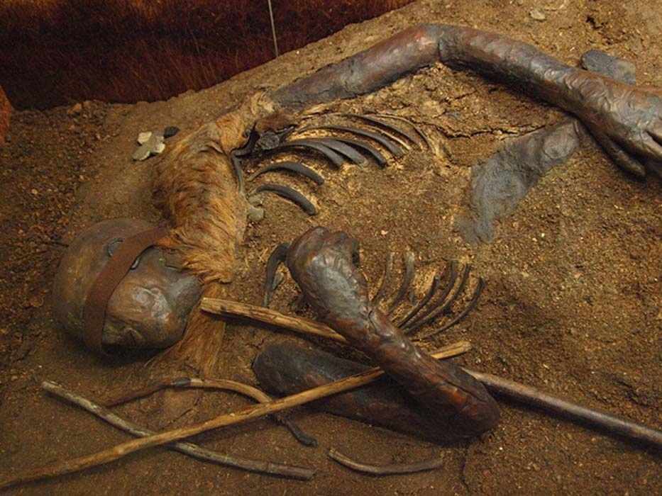 Parte superior del cuerpo de Windeby I. (CC BY-SA 3.0)