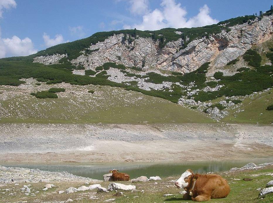 Pastos en el Parque Natural de Fanes-Sennes-Prags, Tirol del Sur. (CC BY-SA 3.0)