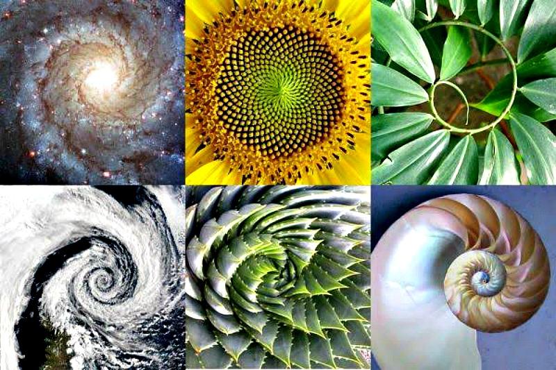 Existen patrones que aparecen de modo natural en el universo. (Fotocomposición: Código Oculto)