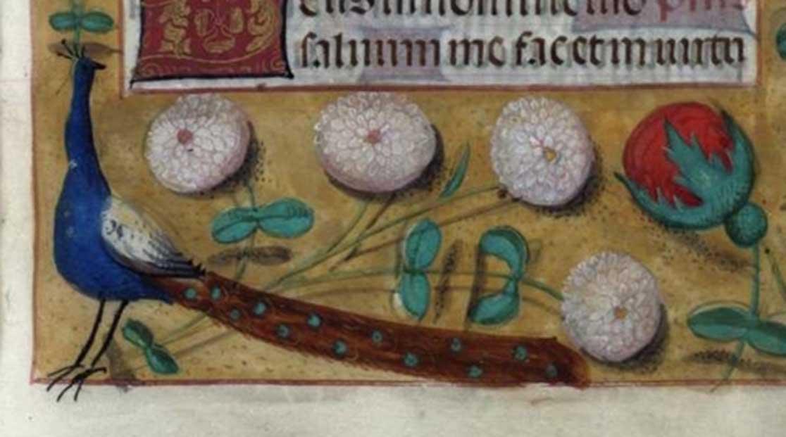 Un opulento banquete navideño. Cortesía de la Biblioteca de Brotherton, Universidad de Leeds