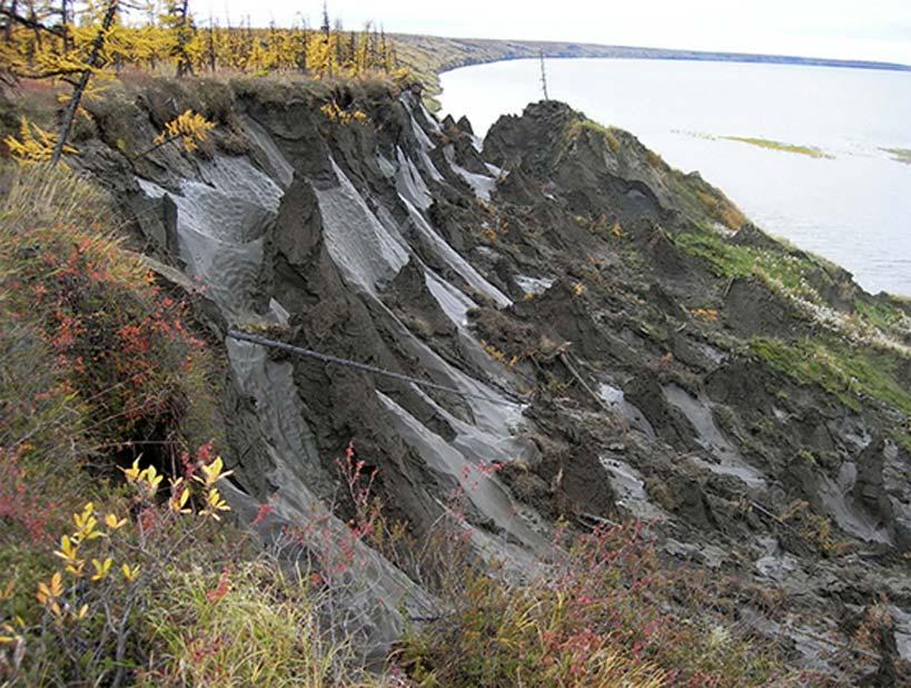 Duvanny Yar, zona de permafrost donde fue descubierto uno de los gusanos. (Imagen: Nikita Zimov)