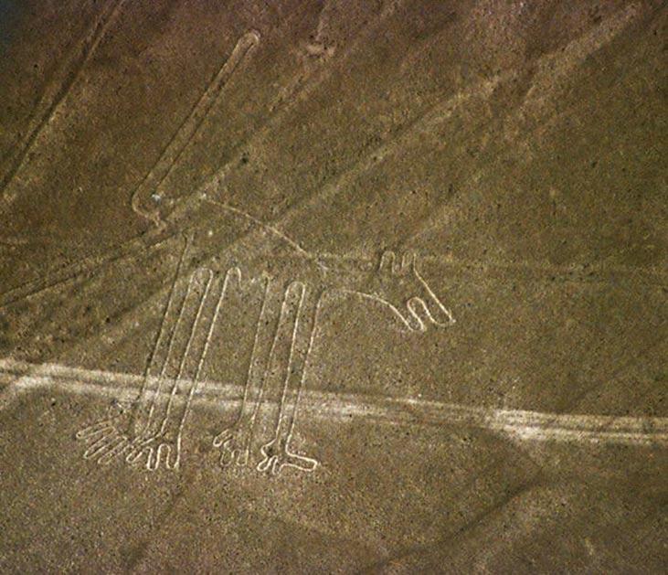Líneas de Nazca: figura conocida como 'el Perro'. (CC BY SA 2.5)
