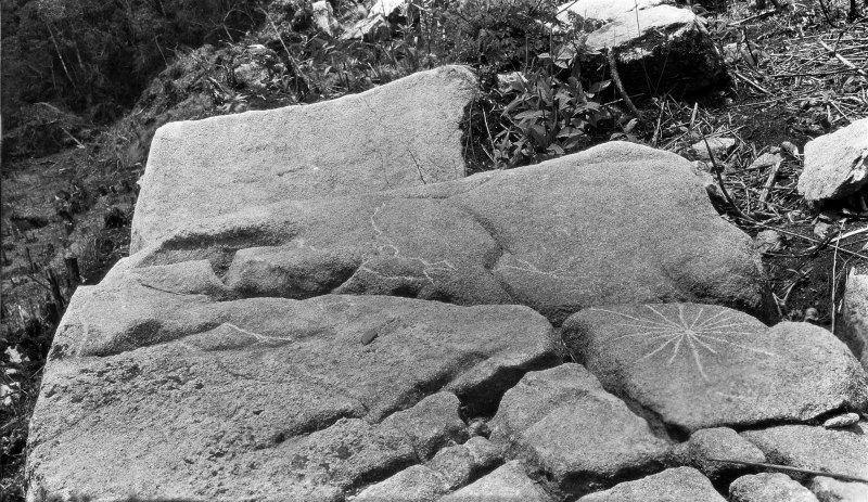 Petroglifo grabado sobre una roca con forma de estrella (Fotografía: Fernando Astete/National Geographic)