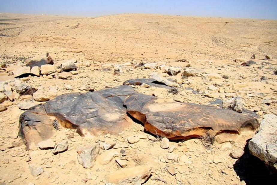 Petroglifos en el desierto del Néguev. (Igor Svobodin/Flickr)
