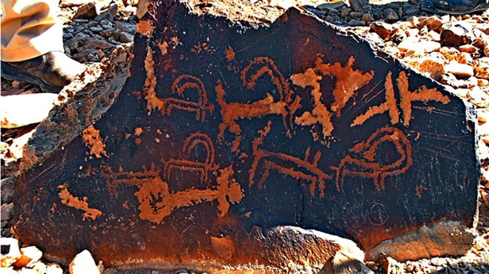 Petroglifos con íbices y símbolos diversos hallados en el monte Karkom, Néguev, Israel. (CC BY-SA 3.0)