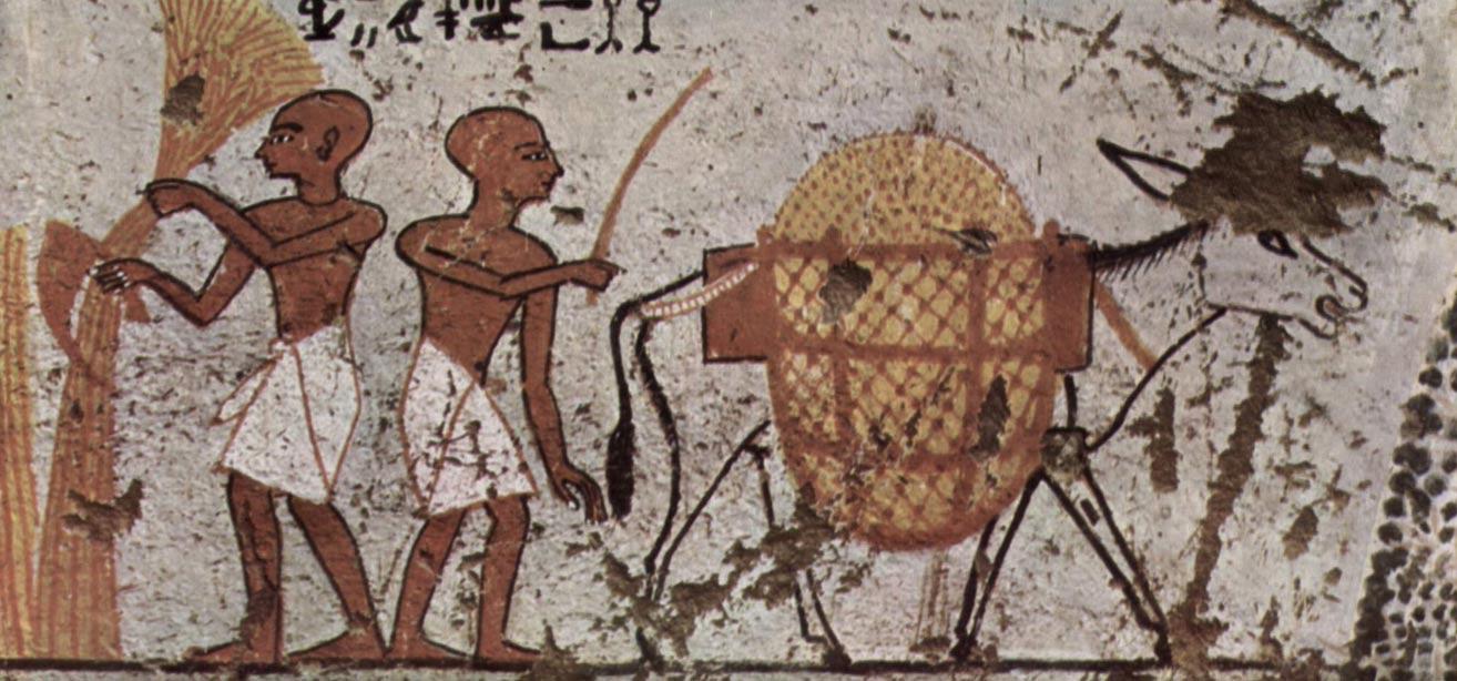 Las hoces son herramientas muy antiguas, utilizadas ya en el siglo XIII a. C., como se puede observar en esta pintura del antiguo Egipto, hallada en Tebas. (Wikimedia Commons)